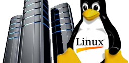 Review Paket Linux Hosting Murah