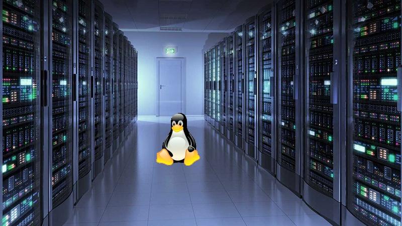 Cara menentukan kualitas layanan linux hosting